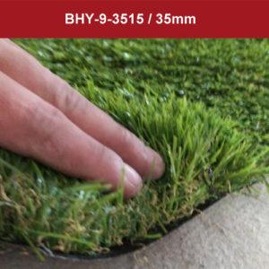 GRASS_BHY-9-3515__-300x300